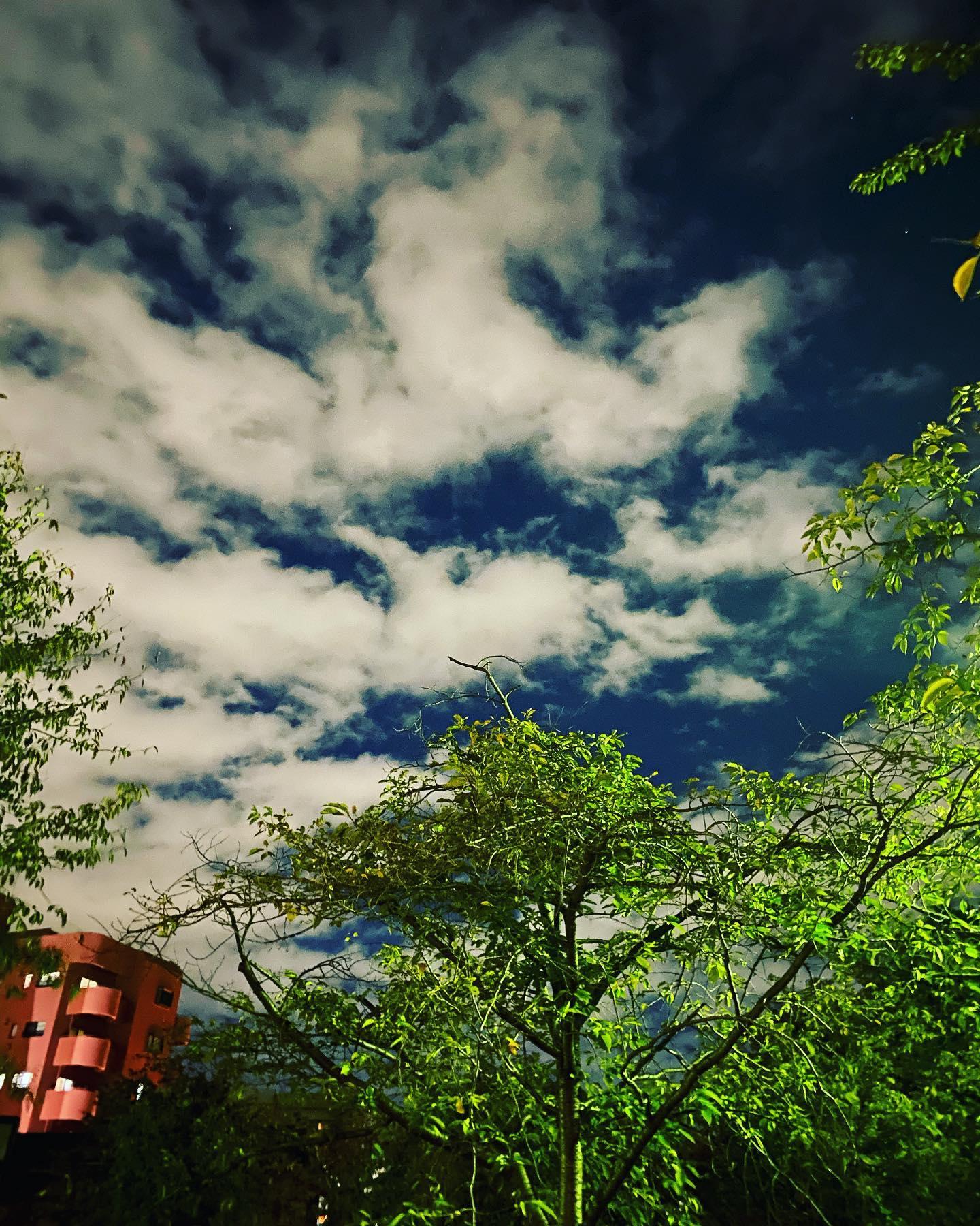 夜の晴天昨日の19時44分あ!青空だぁーと思って思わず撮った。静岡で育ったから、北陸の晴れ、今日天気いいねーに、これ薄曇りやんかーとツッコミたくなる事にも慣れたけど(笑)北陸の天気はドラマチックだったりする冬の雷ののち霰がドサーとか…夜なのに、こんなに雲と空色がくっきり分かれてる!夜の晴天!そんな感動も頂けた#カフェバー #Cafebar#心地よい空間 #金沢片町 #楽しいひと時を #るたん#letemps #Letemps#CafeBAR_Le_temps#カフェバー_るたん#おひとり様でも#犀川沿いの夜景#景色が良い #お酒と音楽が楽しめる#歌えるカフェバー#感染対策#夜の晴天#北陸の天気#冬の雷#夜の青空#静岡出身です#猫好きです#感染対策強化#いしかわ新型コロナ対策認証店 - 金沢片町るたん